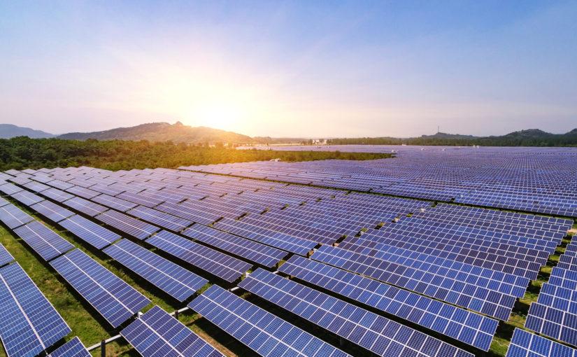 Utility Scale Solar kills 140,000 Birds